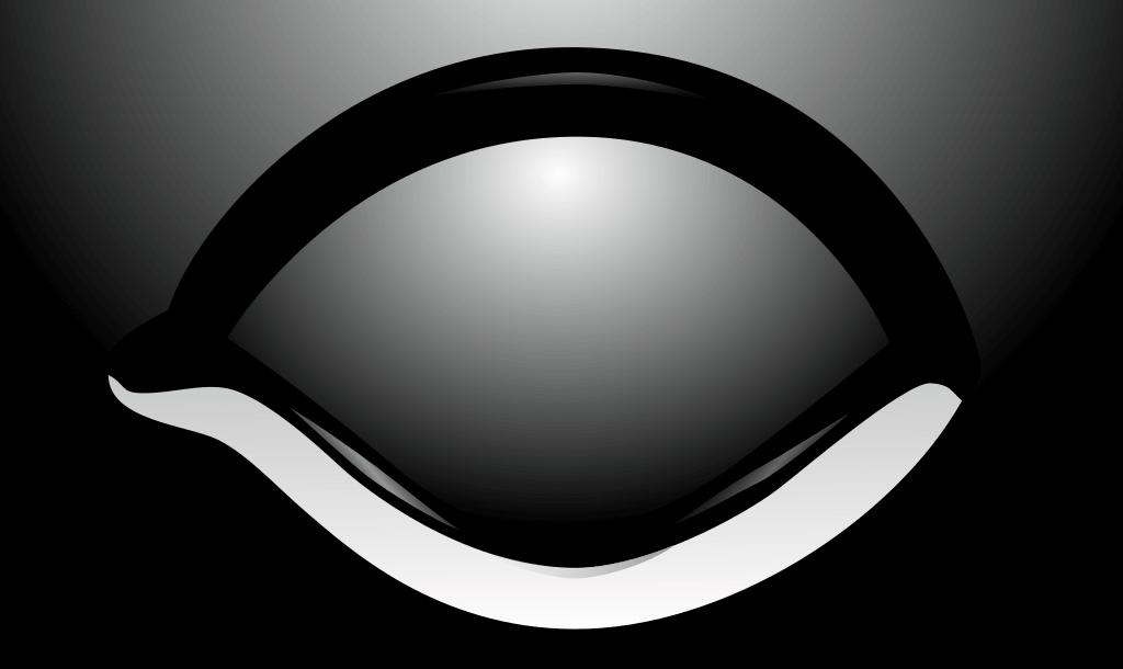 Was ist DSA? Logo von Das Schwarze Auge